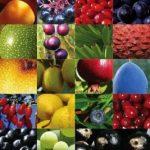 Antioxidant Dietary Supplement