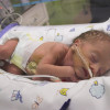 baby boy in intensive care only one day old