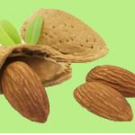 best foods to eat for hypothyroidism